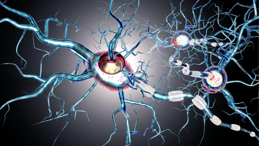 cannabis and neurodegenerative disease